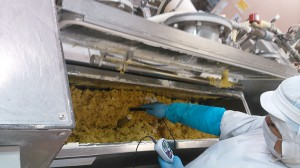 製麺 ミキシング
